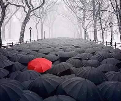 إنْ كانتْ مِظلّتكَ مُختلفة.