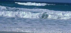 صمتكِ على الشّاطئ الصّخري جمالُ