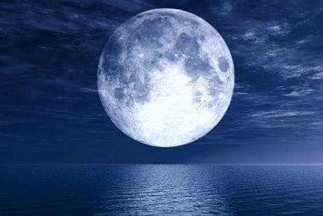 القمرُ شيرين يَعشقُ الوحدةَ و الانفْرادَ