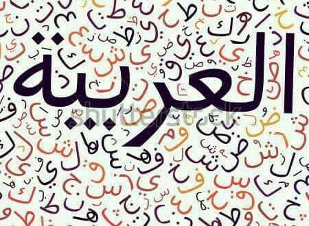 اللّغة العربية في الدّول الغربية