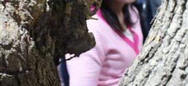 قلْ للأشجارِ كيفَ تخفينَ القَمرَ؟