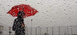 دعيها تمطرُ و تمطرُ سَماء حلَـبِ