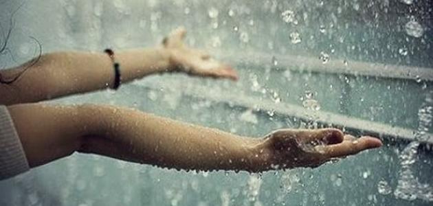 سجعية المطر